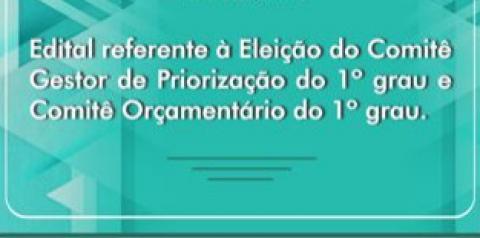 Servidores do TJ-PI e magistrados de 1º Grau poderão se candidatar para Comitê Gestor de Primeiro Grau a partir desta segunda-feira (15)